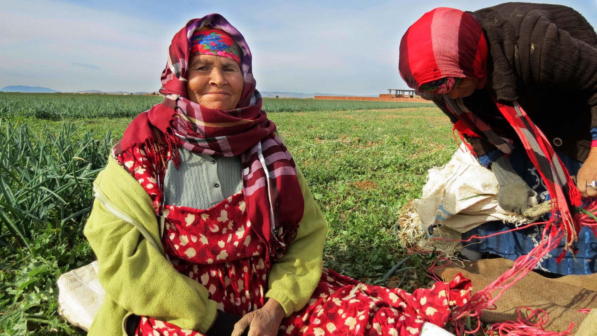 tomates-2-femmes-qui-travaillent-inkyfada